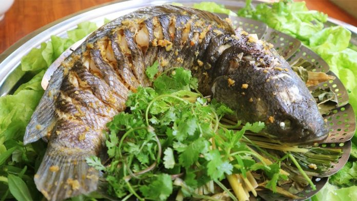 Cách Làm Cá Hấp Bia Thơm Ngon, Ngọt Thịt Hấp Dẫn Như Ngoài Hàng